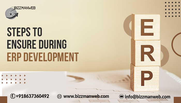 Steps to ensure during ERP development